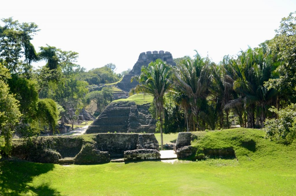 The jungle creeping back into a manicured scene with Mayan temples.