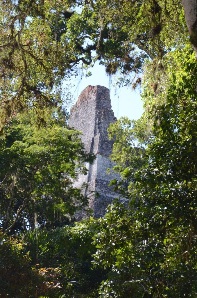 The peak of a temple through the trees.