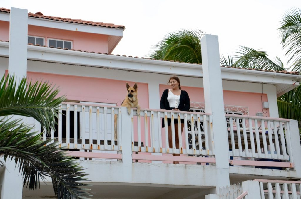 A woman and a dog watching people from a balcony.