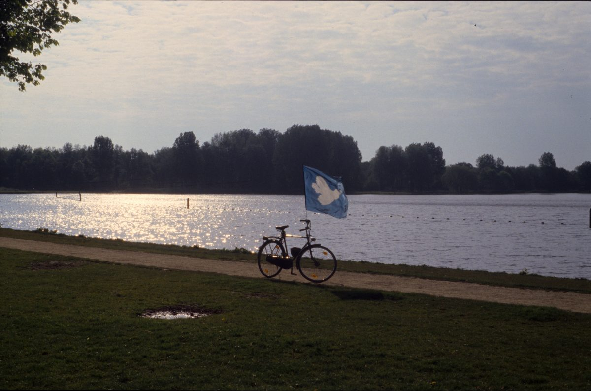 A bike with a peace dove flag flying in the breeze by a lake at sunset.