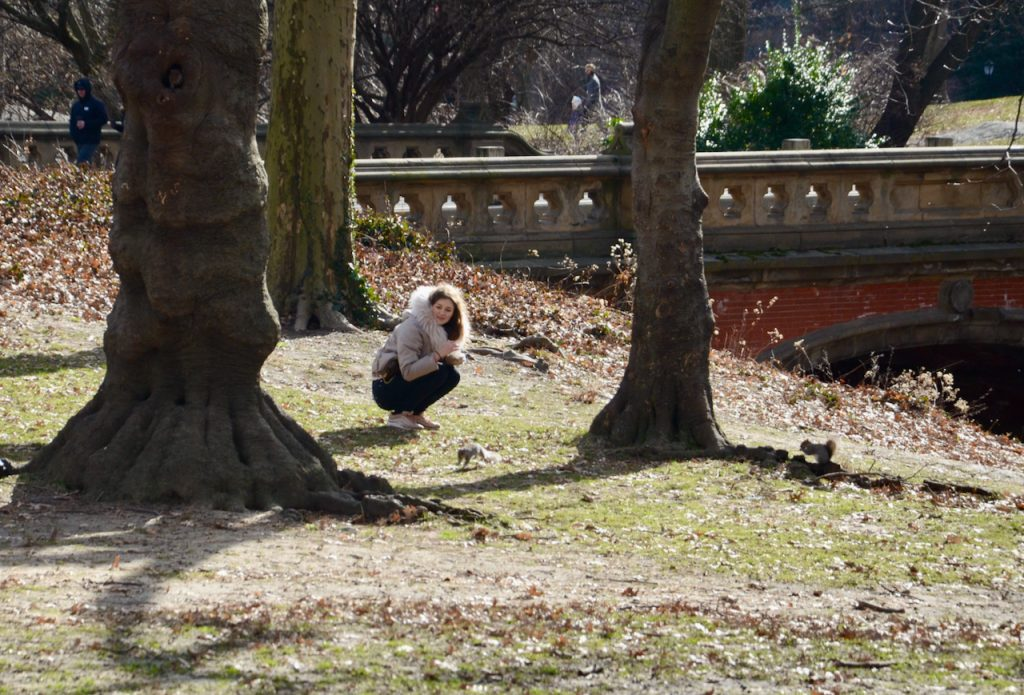 A woman kneeling to look at a squirrel