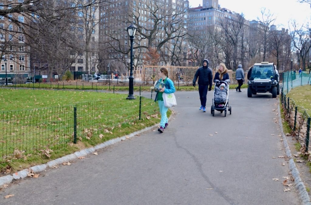 A girl walking through central park reading her book and looking around as she goes.